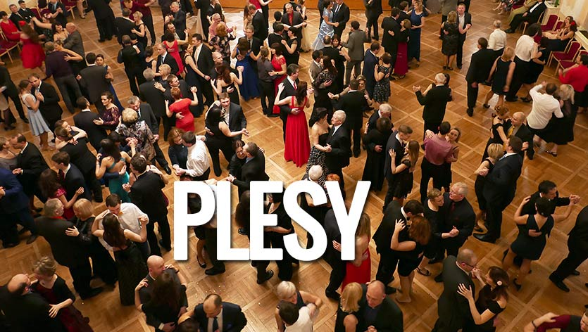 plesy-dj-enity